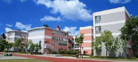 协和国际学校(张江校区)